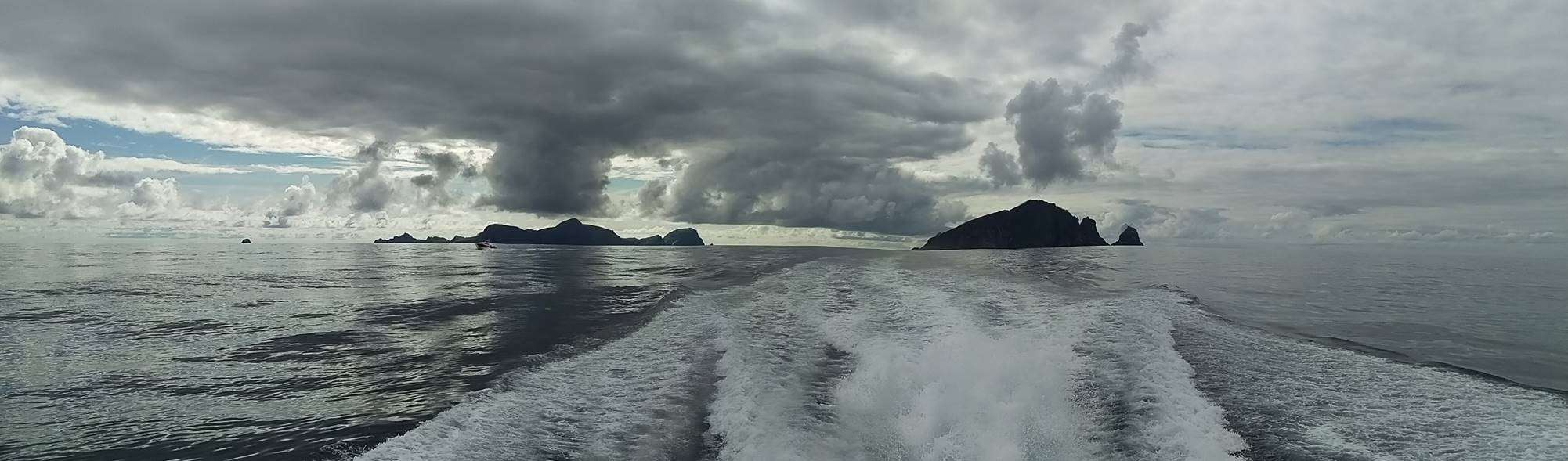 Racing Ahead of the Storm